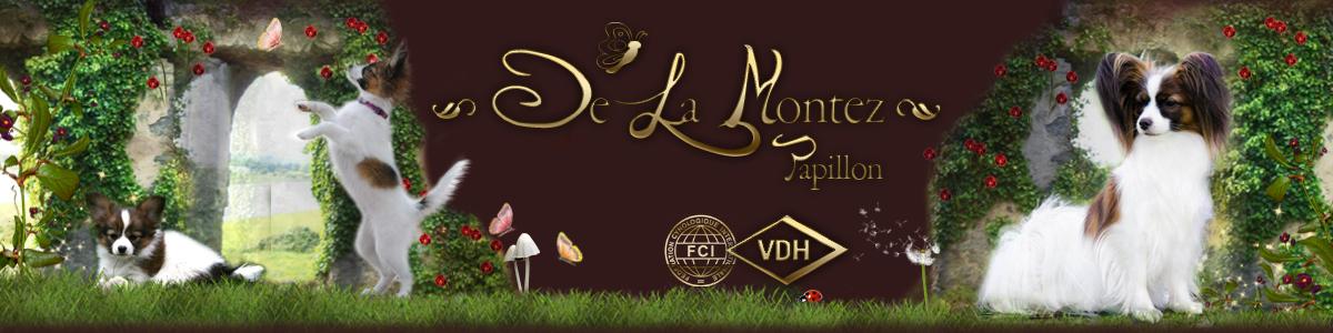 Papillons De La Montez